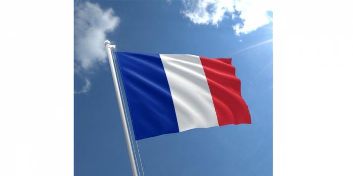 დროშა ნაჭრის საფრანგეთი, 90X150სმ.