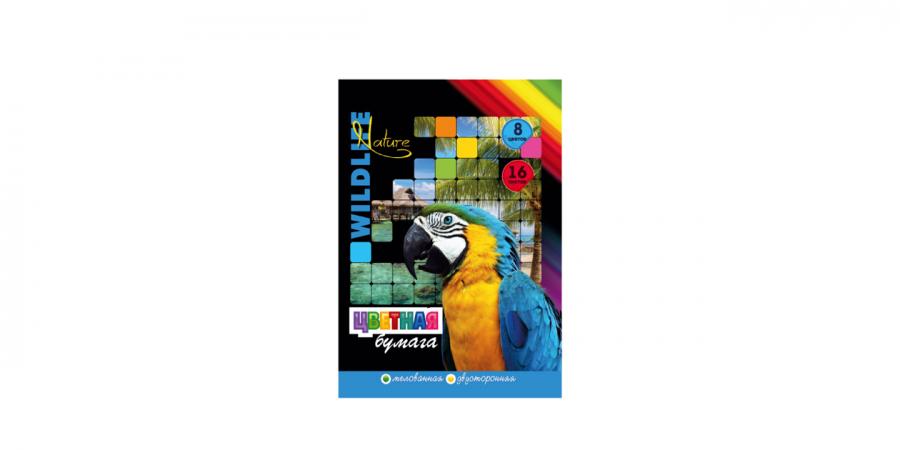 ფერადი ქაღალდი A4, 8 ფერი, 16 ფურცლიანი, Ofort